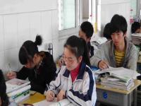 学远教育——致力于中小学文化辅导的专业机构