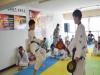冠军跆拳道——为广大拳击跆拳道爱好者提供