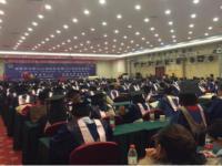 诺加国际教育加盟