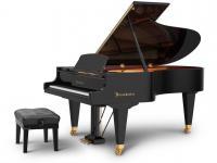 阿米诺钢琴——钢琴少儿教育基地