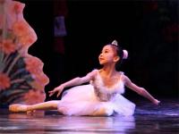 舞蹈学校加盟费需要多少钱