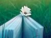 100教育——专注于初高中一对一辅导的互联