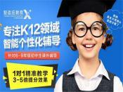 黄冈智适应教育——中国网络教育领导者