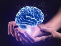 全脑教育加盟费是多少