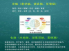 卡睿特国际全脑教育——专注于儿童潜能开发
