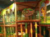 贝乐鸥主题乐园——与世界同步的儿童乐园