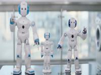 <strong>选择机器人教育加盟项目的利润到底高不高</strong>